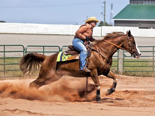 Photographie prise par Horse Development, cheval de western ou de reining au galop. Vous avez créé un objet innovant ou connecté pour l'équitation ou l'entraînement du cheval de sport ou de courses, nous pouvons vous aider